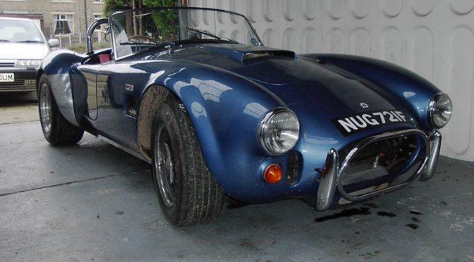 Steve's DAX Cobra 289ci