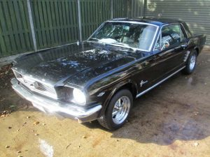 Adam's Mustang
